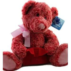 Applause By Russ Two Toned Red Pink Teddy Bear with Gift
